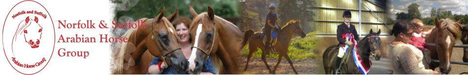Norfolk and Suffolk Arabian Horse Group